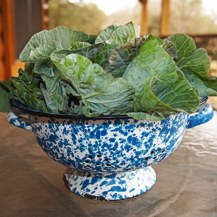 A bowl of leafy greens.
